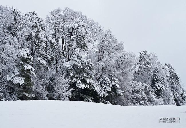 snowday-9396_900