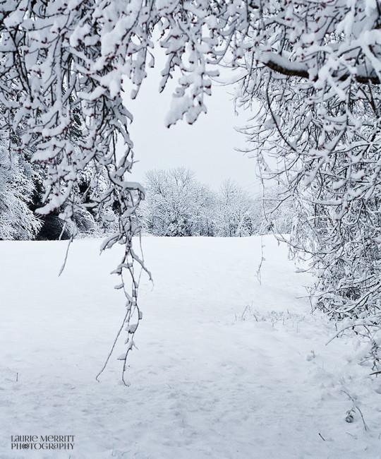 snowday-9399_900