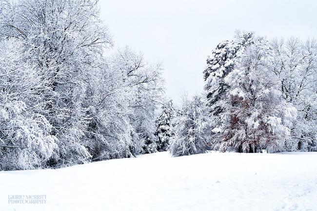 snowday-9407_900