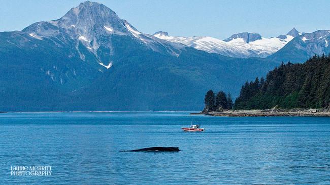 Juneau-9592_900