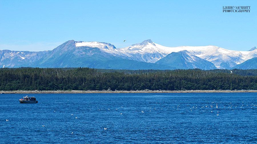 Juneau-4763_900