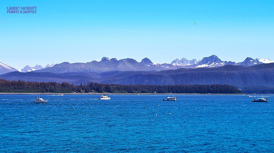 Juneau-4764_900