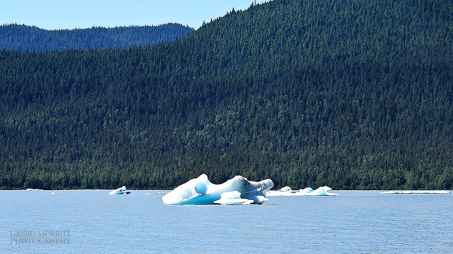 Juneau-4791_900