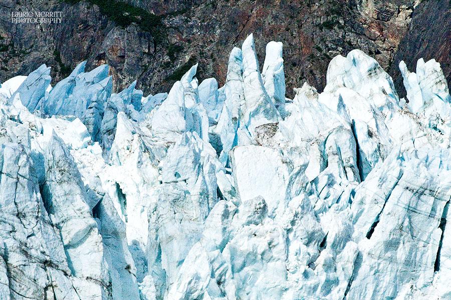 GlacierBay-0884_900