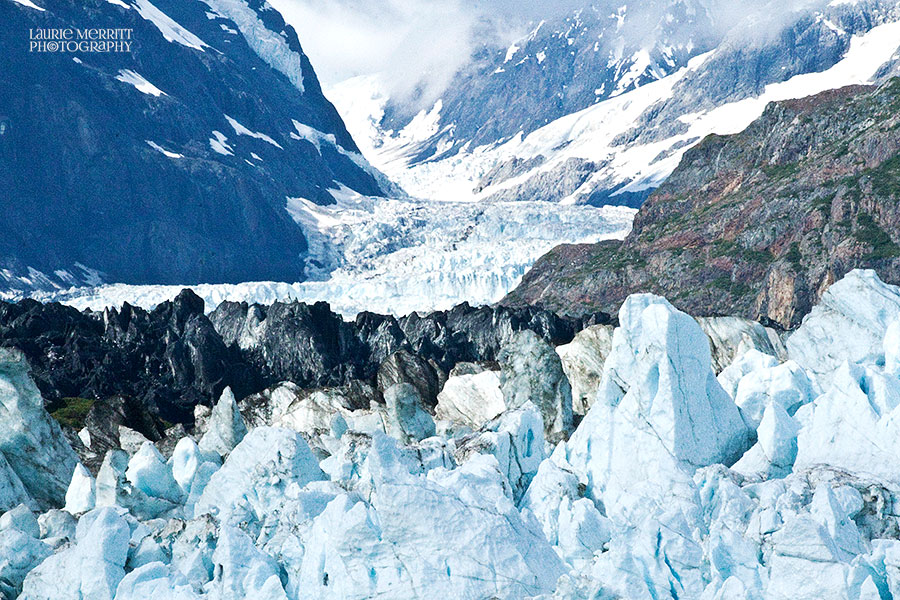 GlacierBay-0885_900