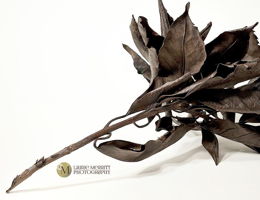 leaves4-2929-45_2_900