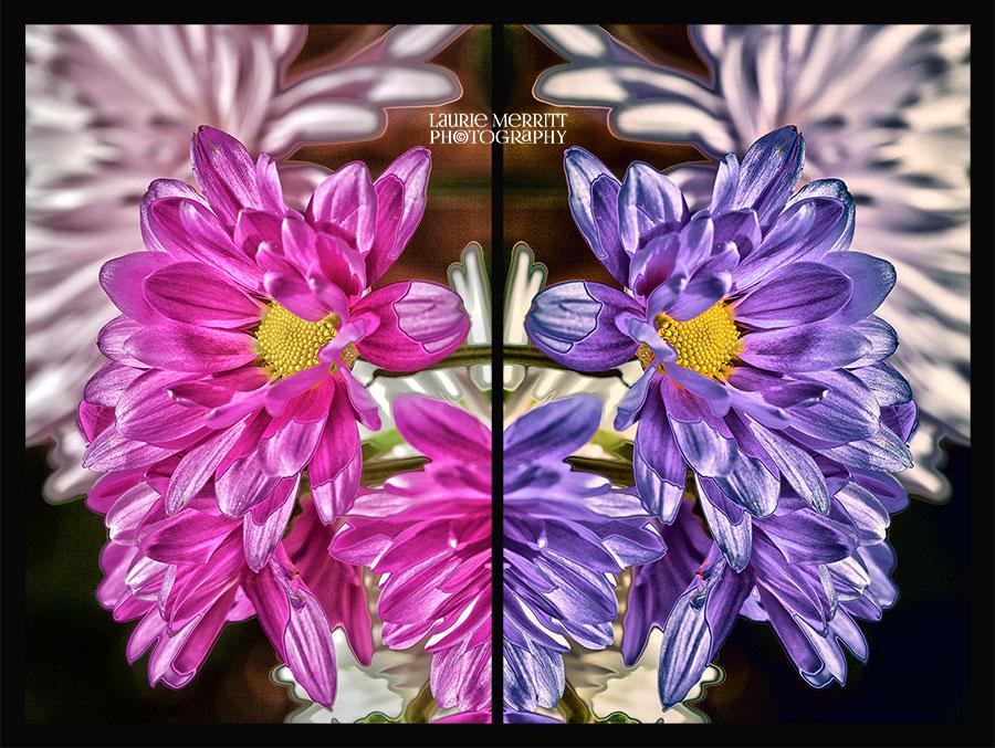 floral-6107-09_HDRcanvas2_900