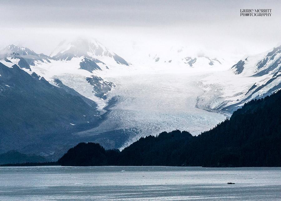 CollegeFjord-1086-87_900