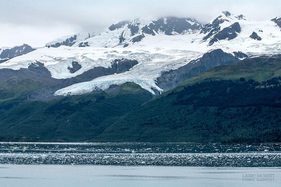 CollegeFjord-1119_900